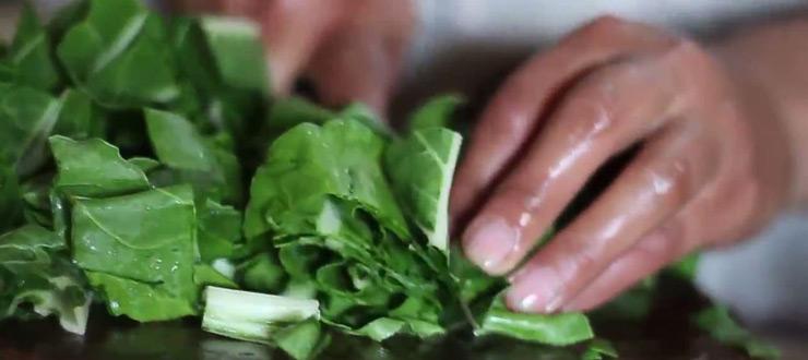 Cocina típica casera: Recorre Chile con la ruta de la comida de Novasur