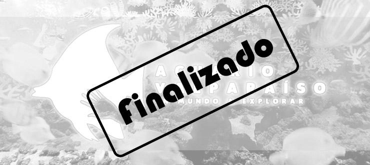 Finalizado: CNTV-Novasur regala entradas para ir al Acuario de Valparaíso en vacaciones